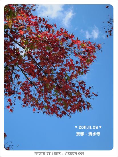 20111108-51清水寺