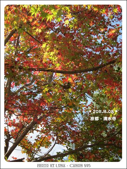 20111108-57清水寺
