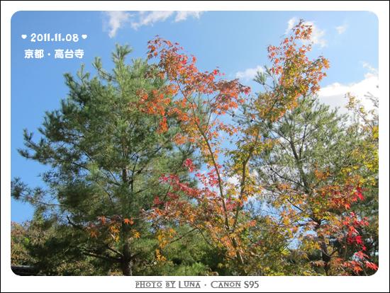 20111108-70高台寺