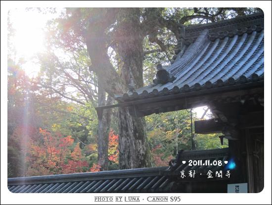 20111108-85金閣寺