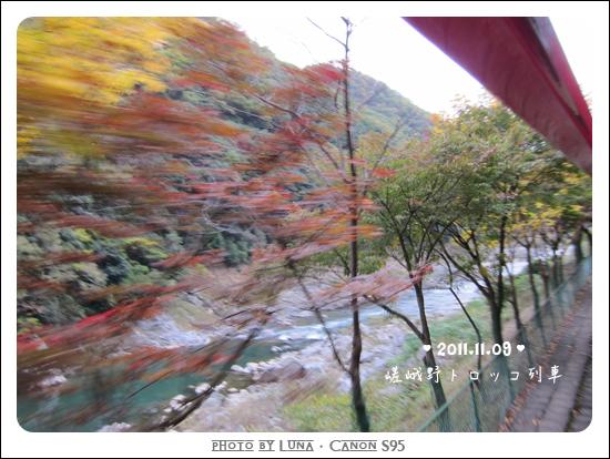 20111109-29觀光小火車