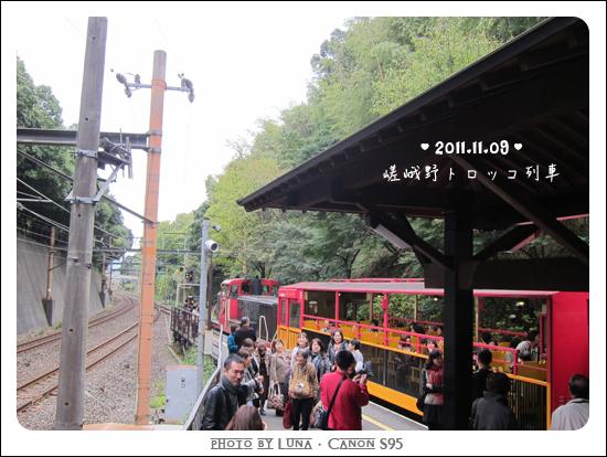 20111109-41觀光小火車
