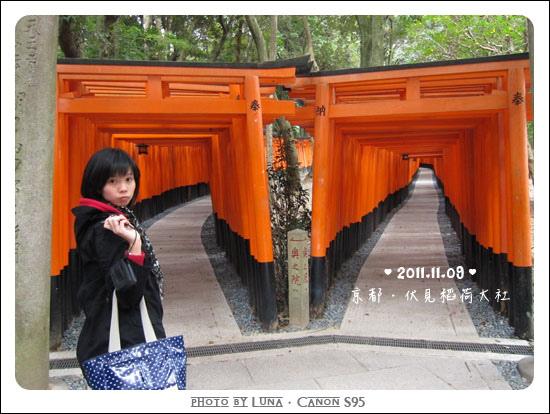 20111109-9913伏見稻荷大社
