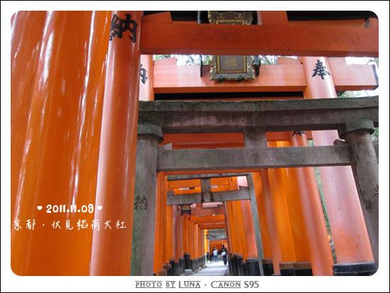 20111109-9912伏見稻荷大社