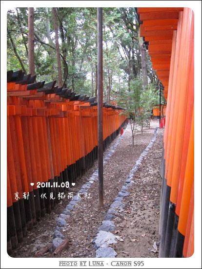 20111109-9916伏見稻荷大社