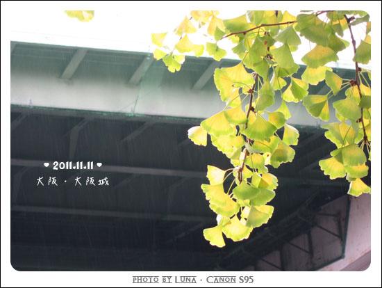 20111111-023大阪城.jpg