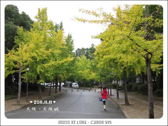 20111111-022大阪城.jpg