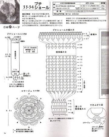 霸王花圍巾.jpg