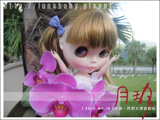 20100909花蓮理想大地20.jpg