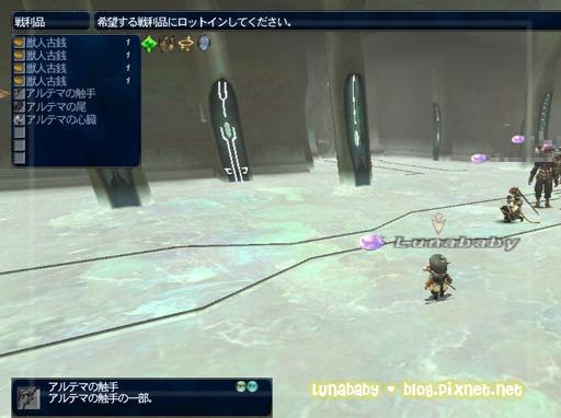 20090522阿魯落物.jpg