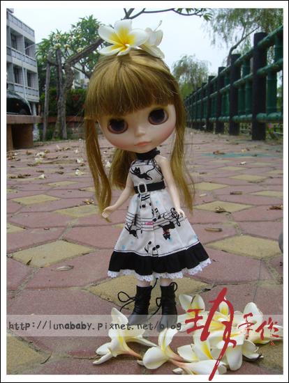 20100508綠川旁桐花09.jpg
