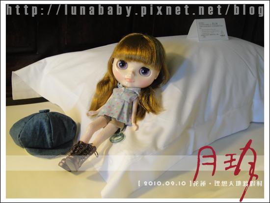 20100909花蓮理想大地03.jpg