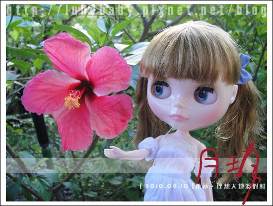 20100909花蓮理想大地12.jpg