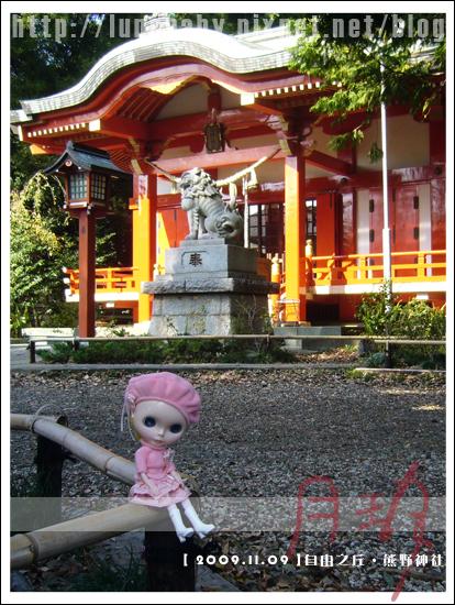 09-自由之丘熊野神社.jpg