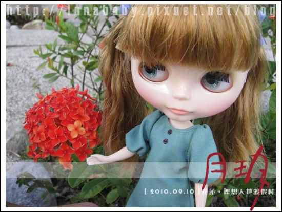 20100909花蓮理想大地10.jpg