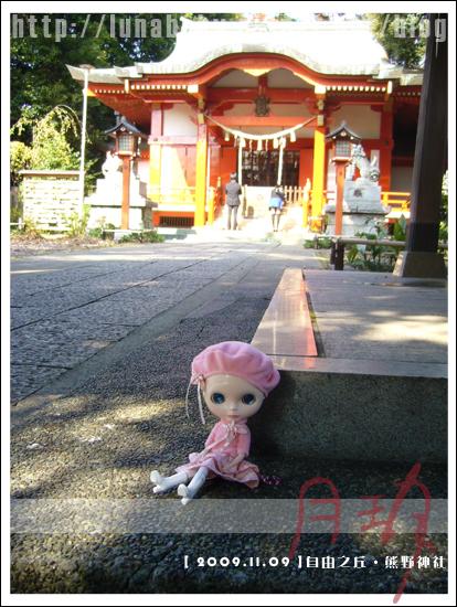 10-自由之丘熊野神社.jpg