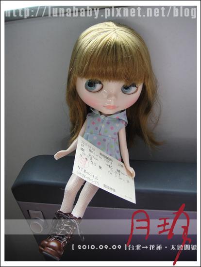20100909花蓮理想大地01.jpg