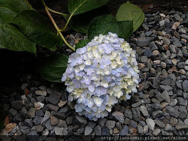2012-09-03-13-26-05_photo