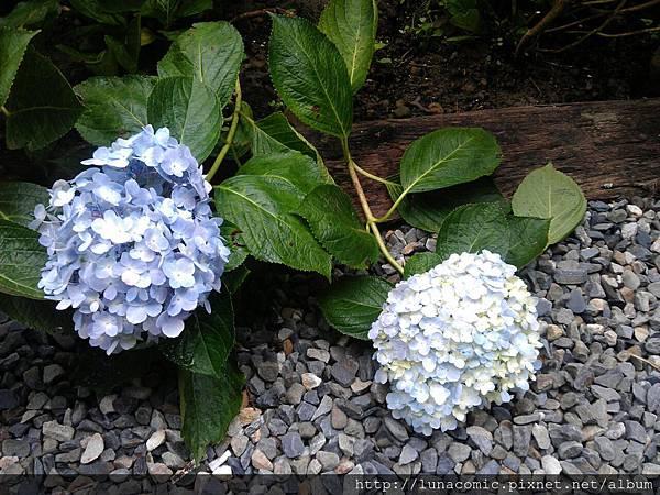 2012-09-03-13-26-20_photo