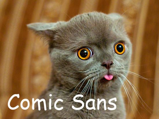用貓咪來對應word的字型01