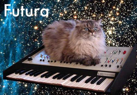用貓咪來對應word的字型06