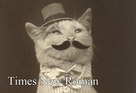 用貓咪來對應word的字型10