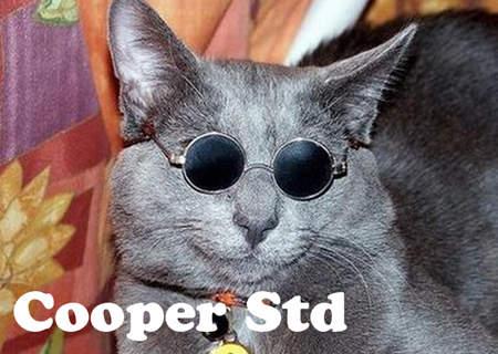 用貓咪來對應word的字型09