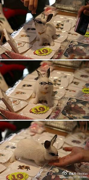 Bunny醬