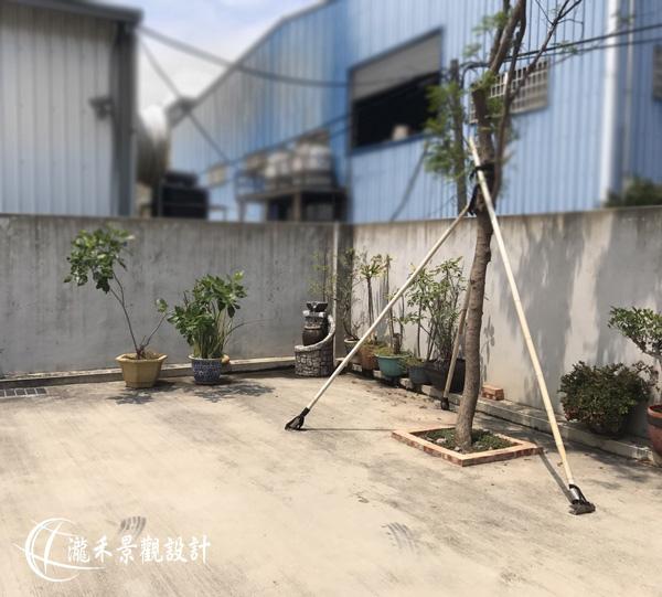 lungho-Litai-0817-26.jpg