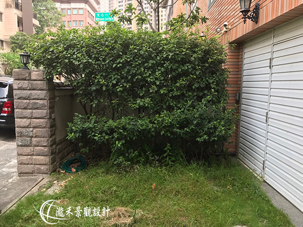 1071120-lunhgo-Garden maintenance-003.jpg