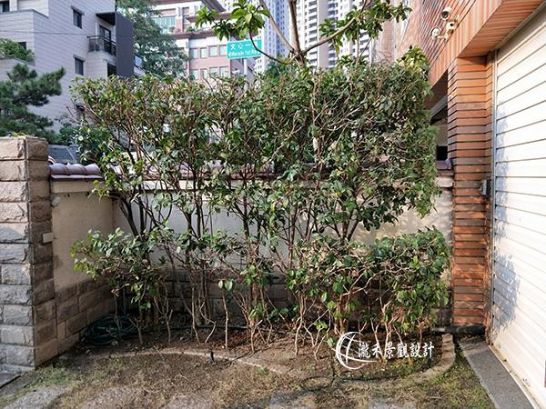 1071120-lunhgo-Garden maintenance-004.jpg