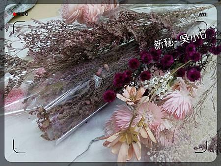 嘉義新祕吳小U-進修20151103002