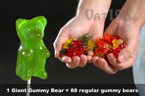 88 bears.jpg