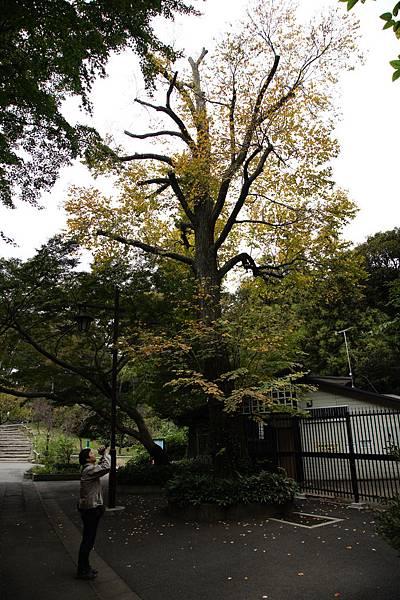 121102東京日光-D4-061