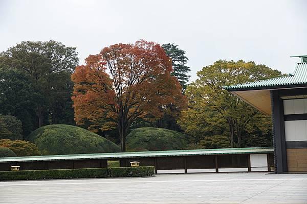 121102東京日光-D4-221