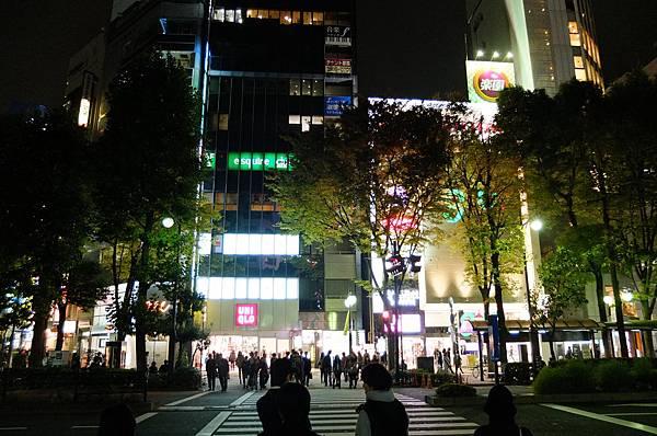 121102東京日光-D4-337