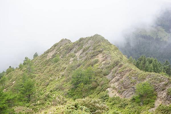151024-25小溪營地-013.JPG