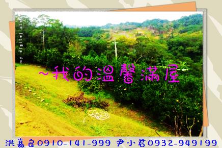 DSC_4503