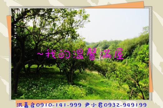 IMG_6147