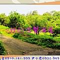 IMG_6148 - 複製