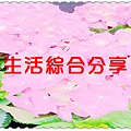 20130401_125434