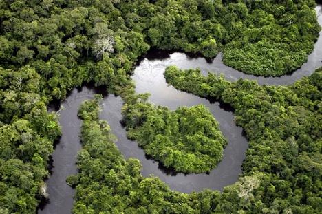 amazon-river.jpg