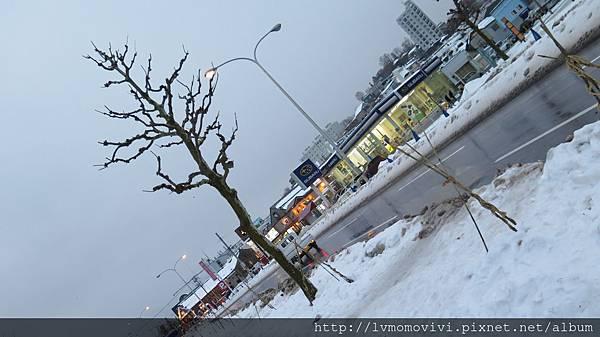 小樽運河2014-12-11 129