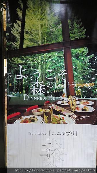 星野 森林餐廳2014-1213 251