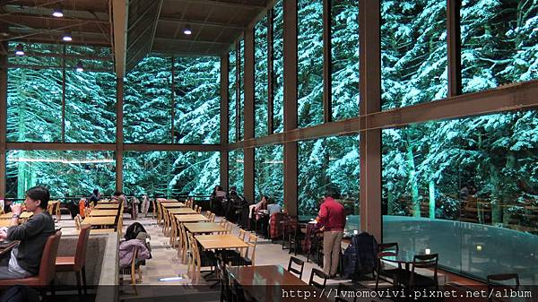 星野 森林餐廳2014-1213 253