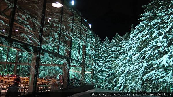 星野 森林餐廳2014-1213 245