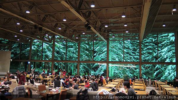 星野 森林餐廳2014-1213 255