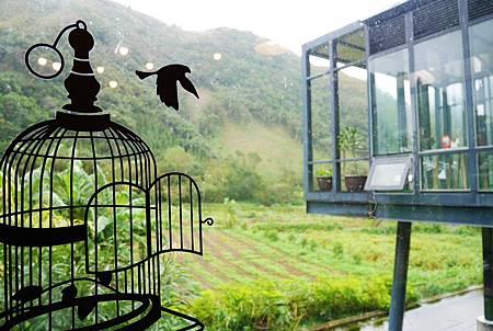 【新竹尖石 | 咖啡廳】充滿設計風格及優異質感的360度景觀咖啡廳♘Z cafe