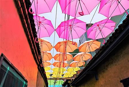 【彰化和美 | 景點】艷陽下的七彩雨傘巷☂卡里善之樹