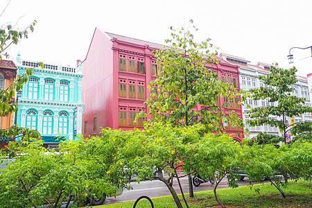 【新加坡 | 遊記】琳瑯滿目的繽紛街區◈牛車水x 天天海南雞飯 x 天宇旅行社購票心得